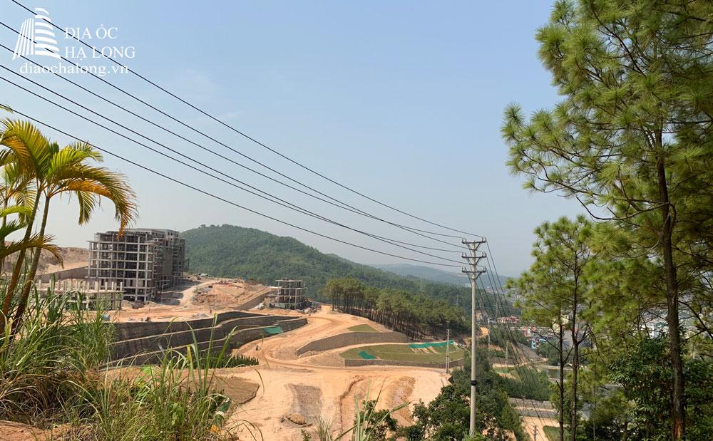 Khu rừng thông nguyên sinh của dự án Green Pine Villas - Monaco Hạ Long